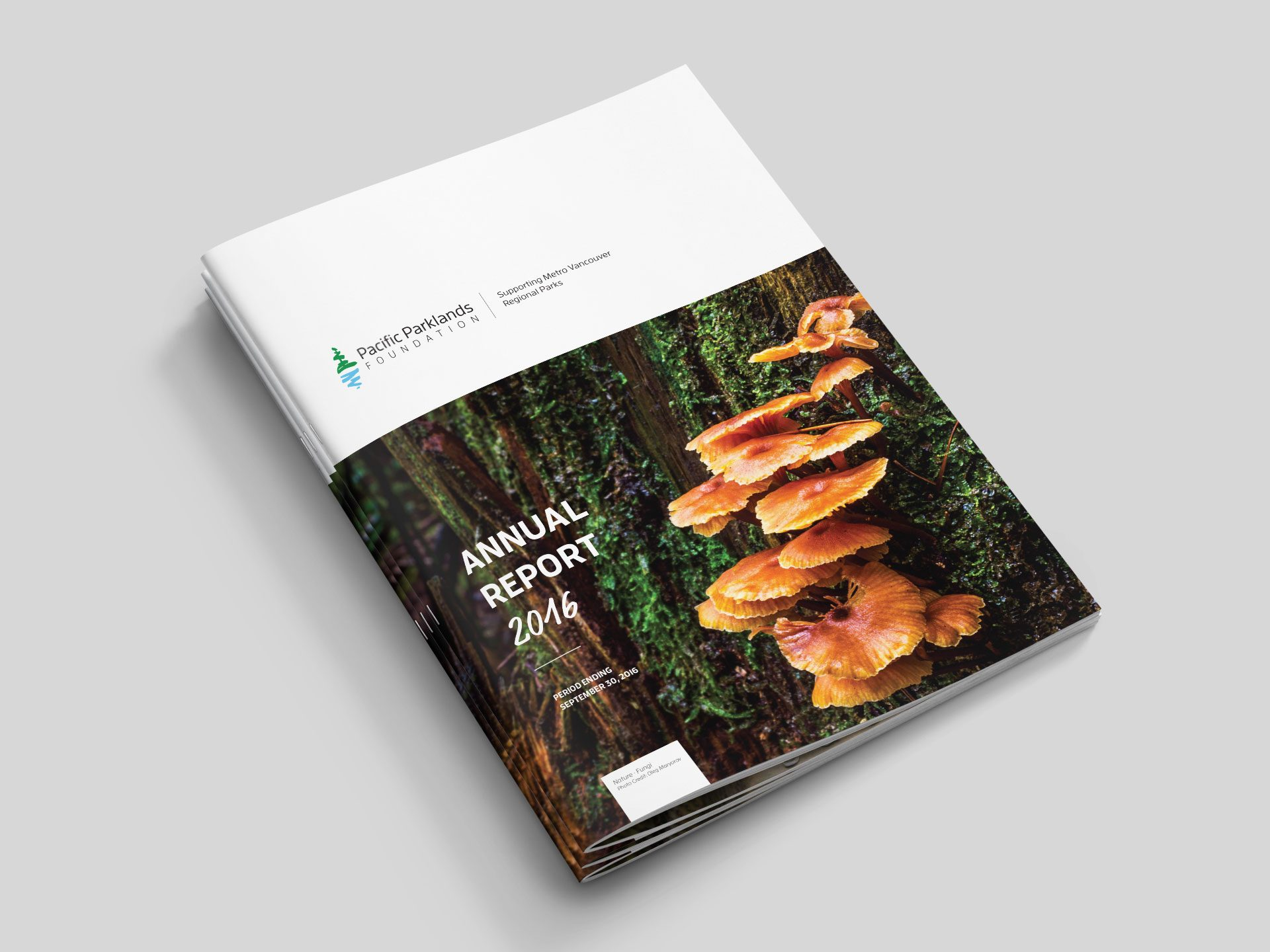 Y5 Creative Case Studies 2017 Annual Report 2016 Booklet Pacific Parklands Foundation 1