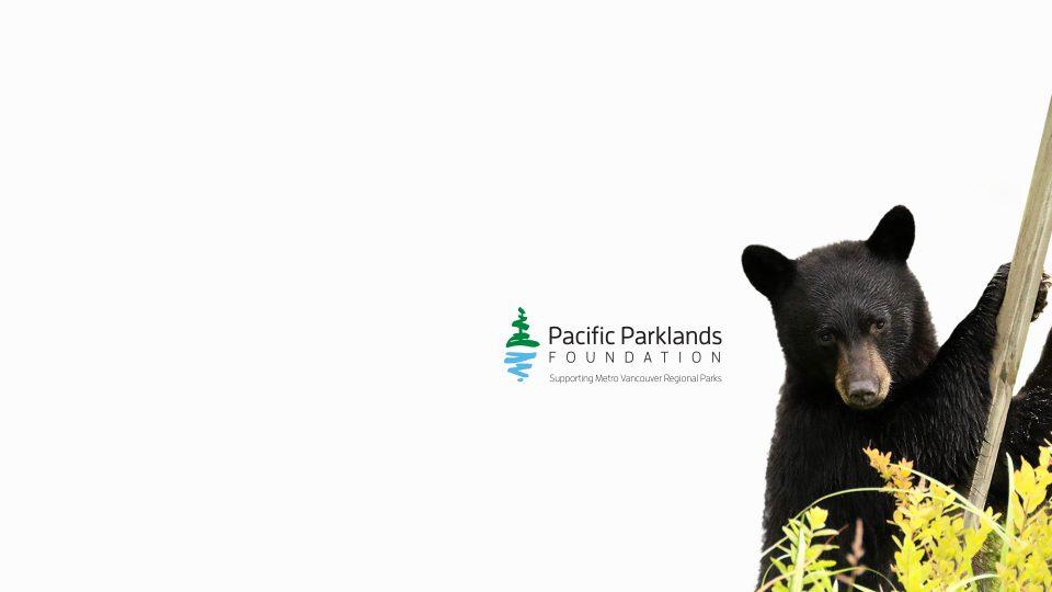 Pacific Parklands Foundation