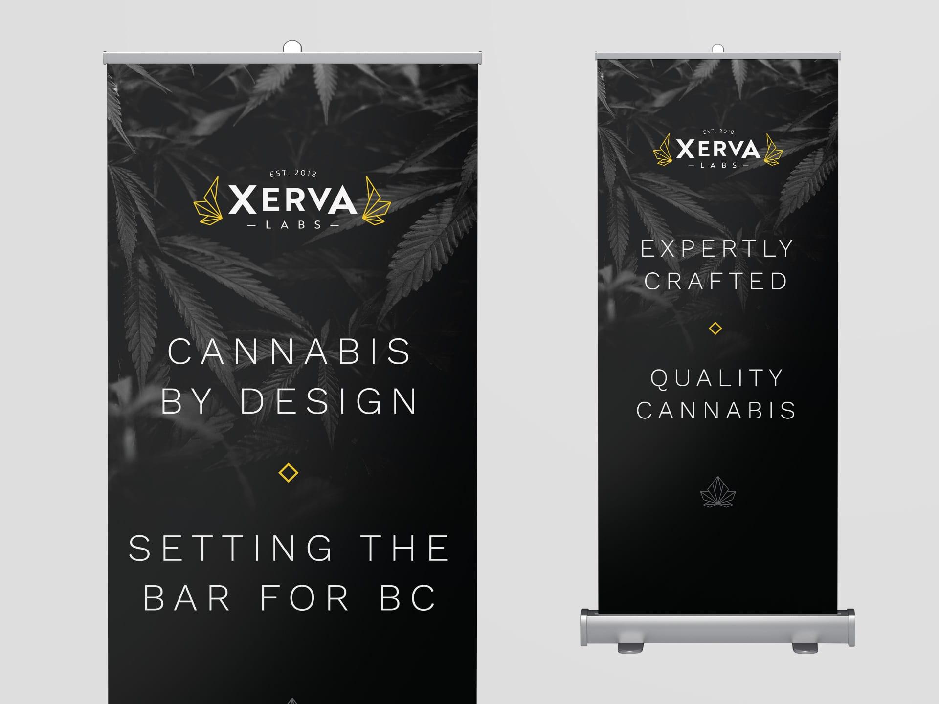 Y5 Creative Case Studies Emerging Markets Xerva Roll Up Banner