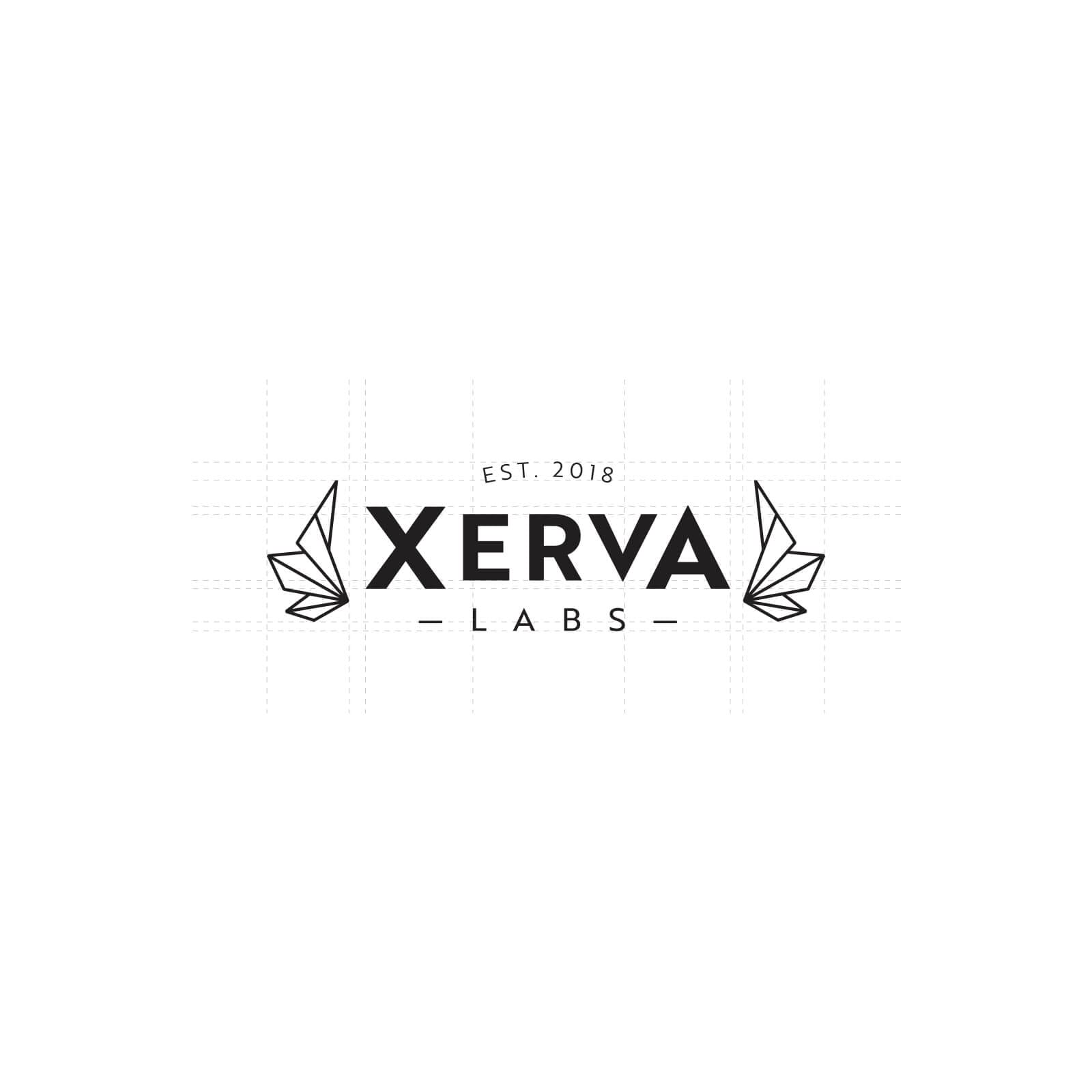 Y5 Creative Case Studies Xerva Work Process 1